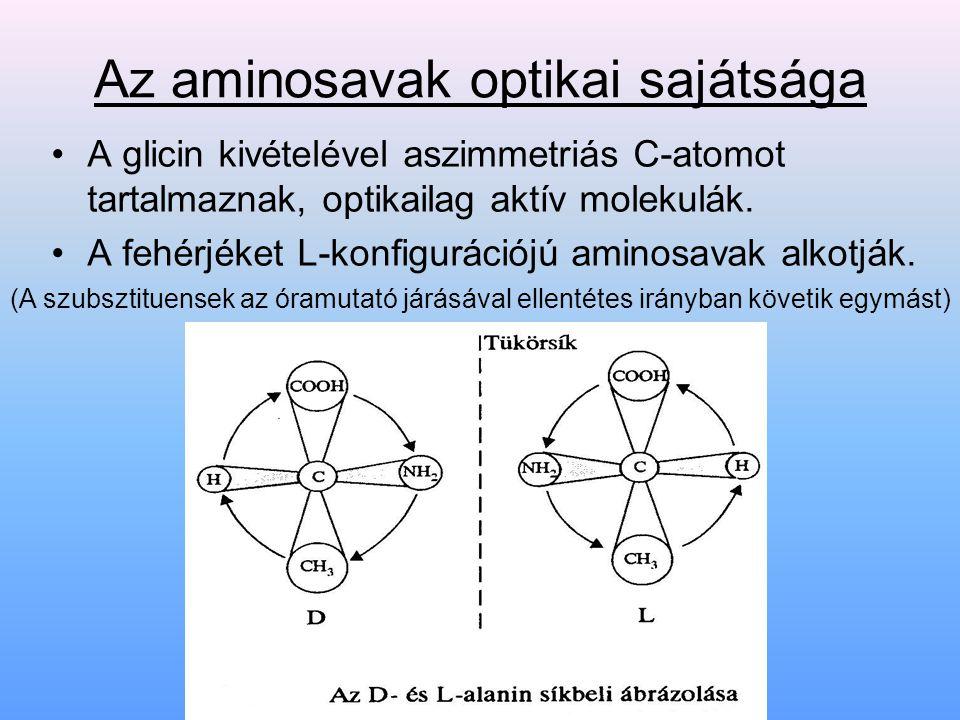 Az aminosavak optikai sajátsága