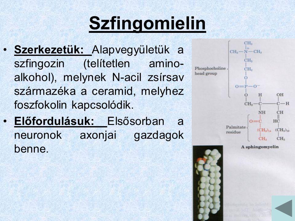 Szfingomielin