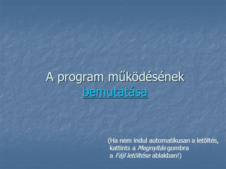 A program működésének bemutatása
