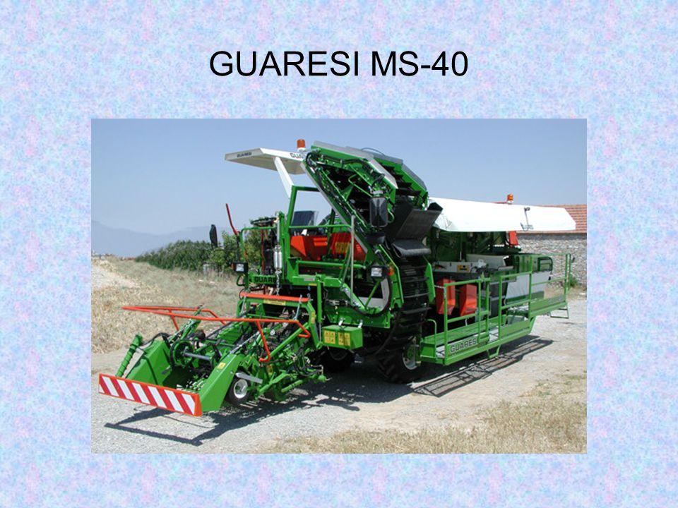 GUARESI MS-40