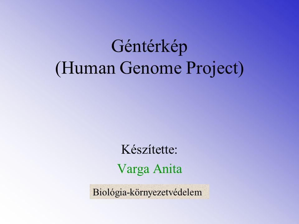 Géntérkép (Human Genome Project)
