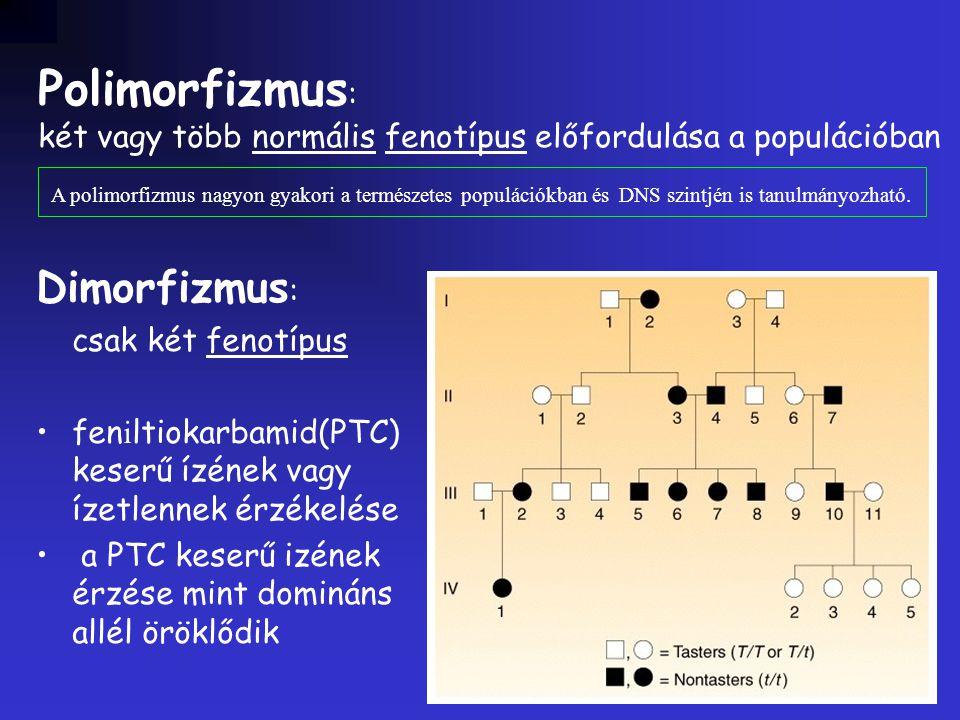 Polimorfizmus: Dimorfizmus: