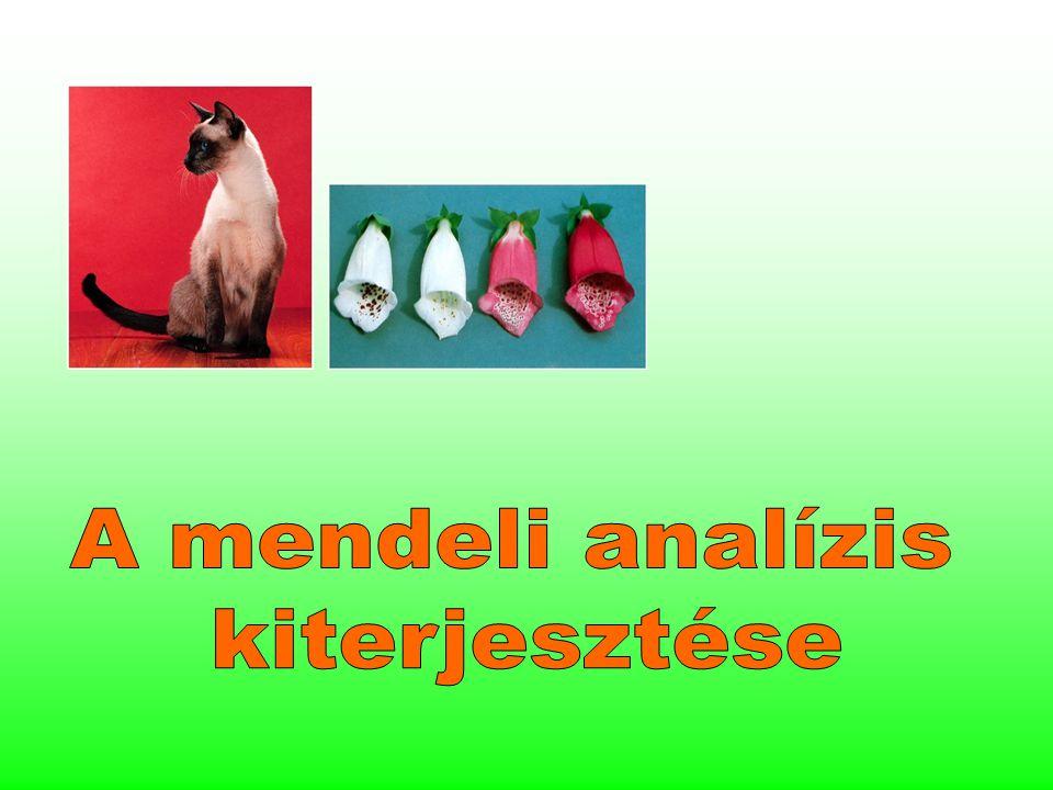 A mendeli analízis kiterjesztése