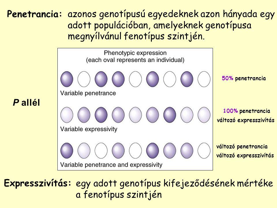 azonos genotípusú egyedeknek azon hányada egy