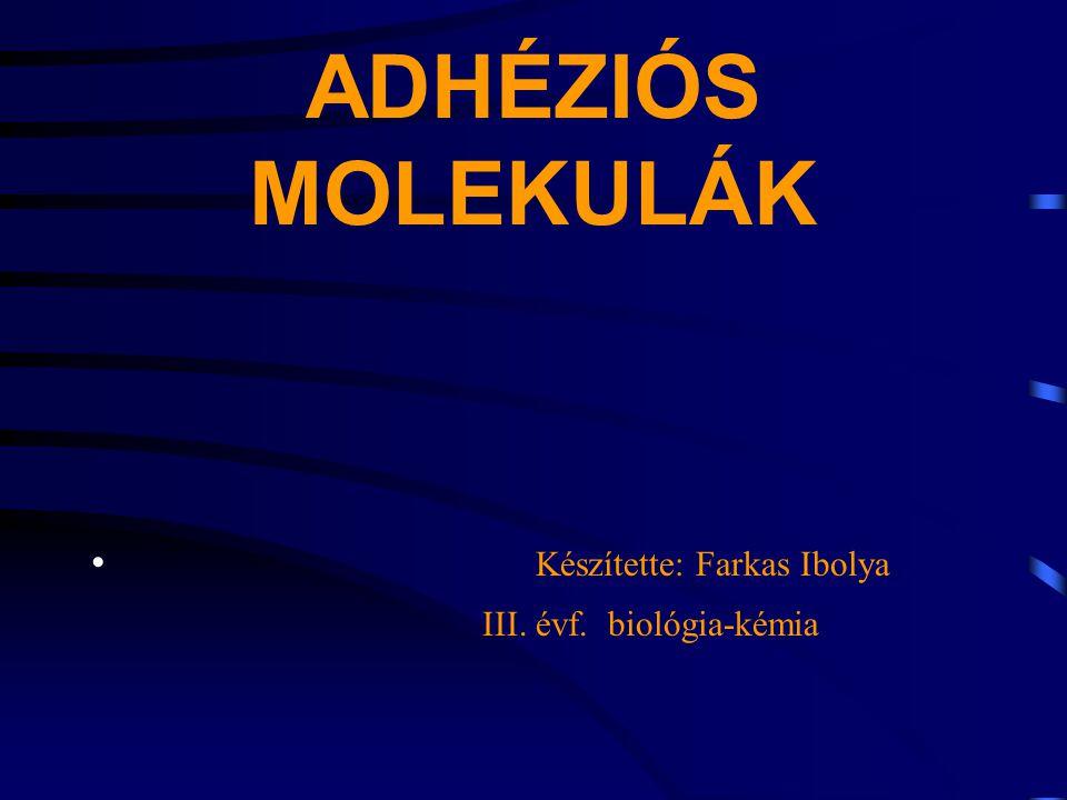 ADHÉZIÓS MOLEKULÁK Készítette: Farkas Ibolya III. évf. biológia-kémia