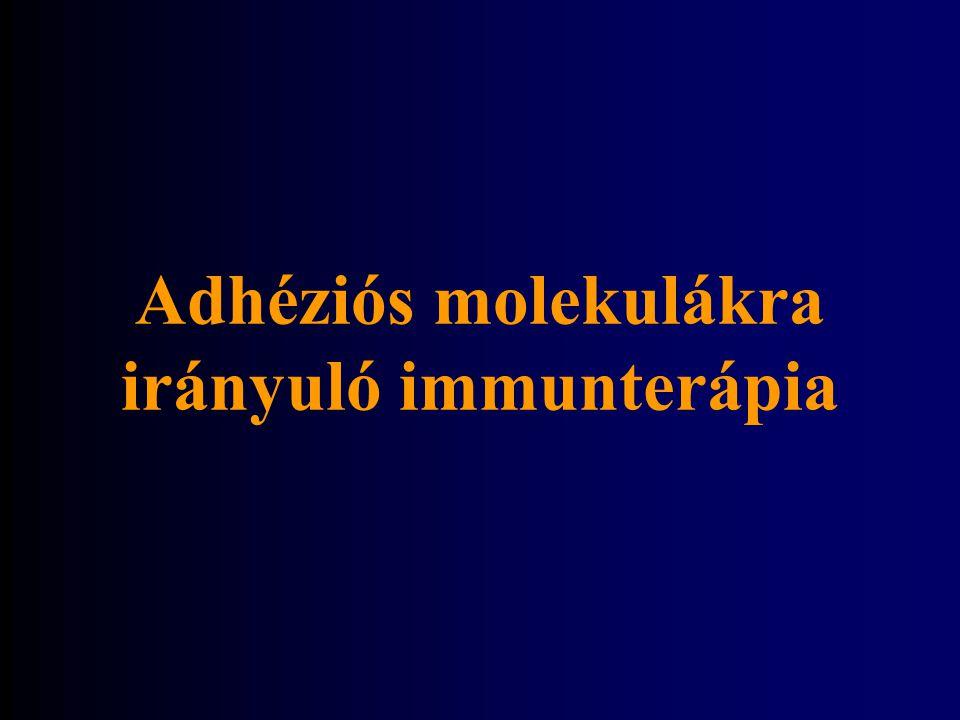 Adhéziós molekulákra irányuló immunterápia