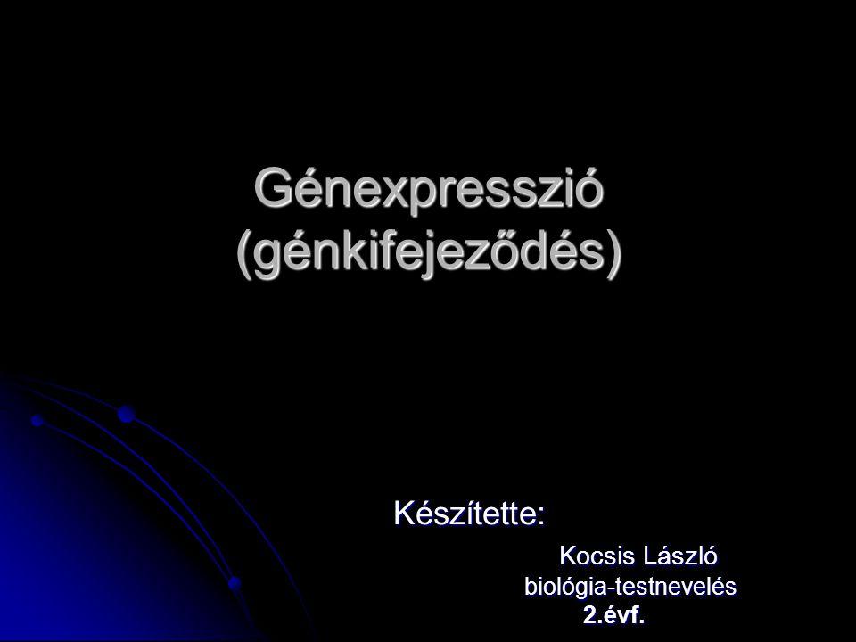 Génexpresszió (génkifejeződés)