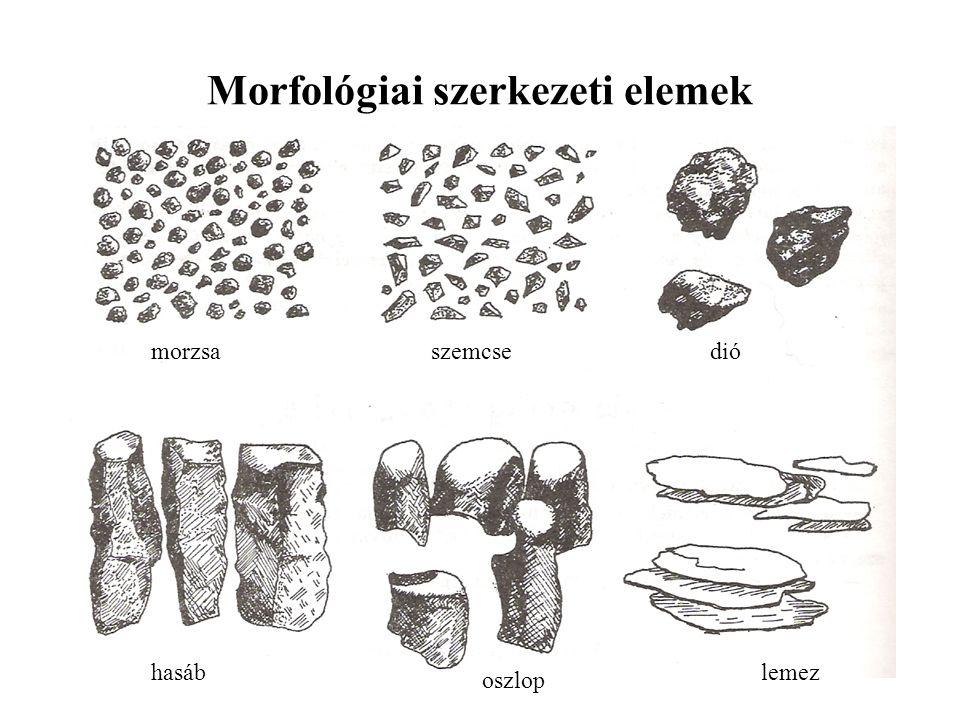 Morfológiai szerkezeti elemek