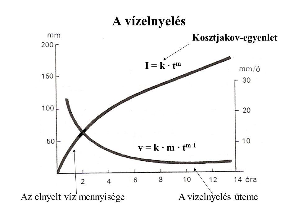 A vízelnyelés Az elnyelt víz mennyisége A vízelnyelés üteme I = k · tm