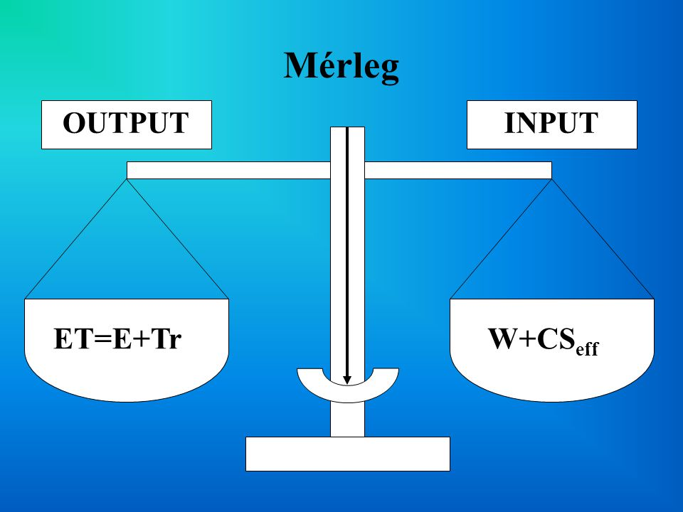 Mérleg W+CSeff ET=E+Tr INPUT OUTPUT