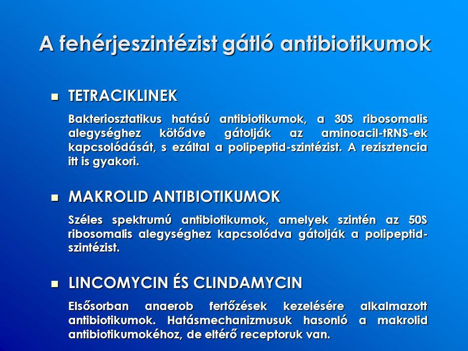 A fehérjeszintézist gátló antibiotikumok