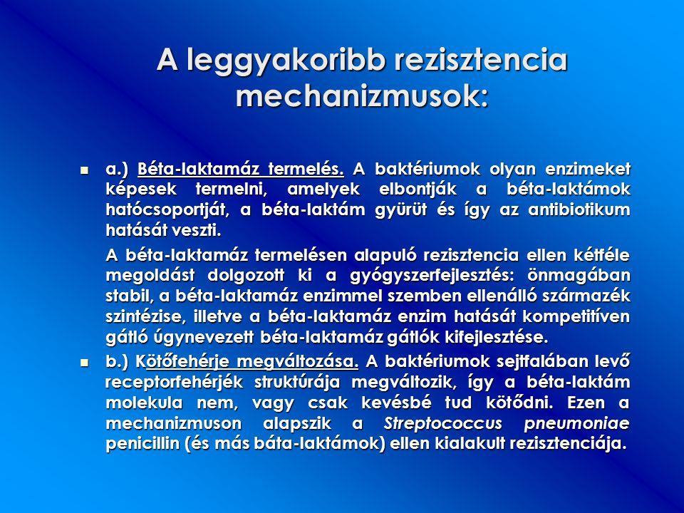 A leggyakoribb rezisztencia mechanizmusok:
