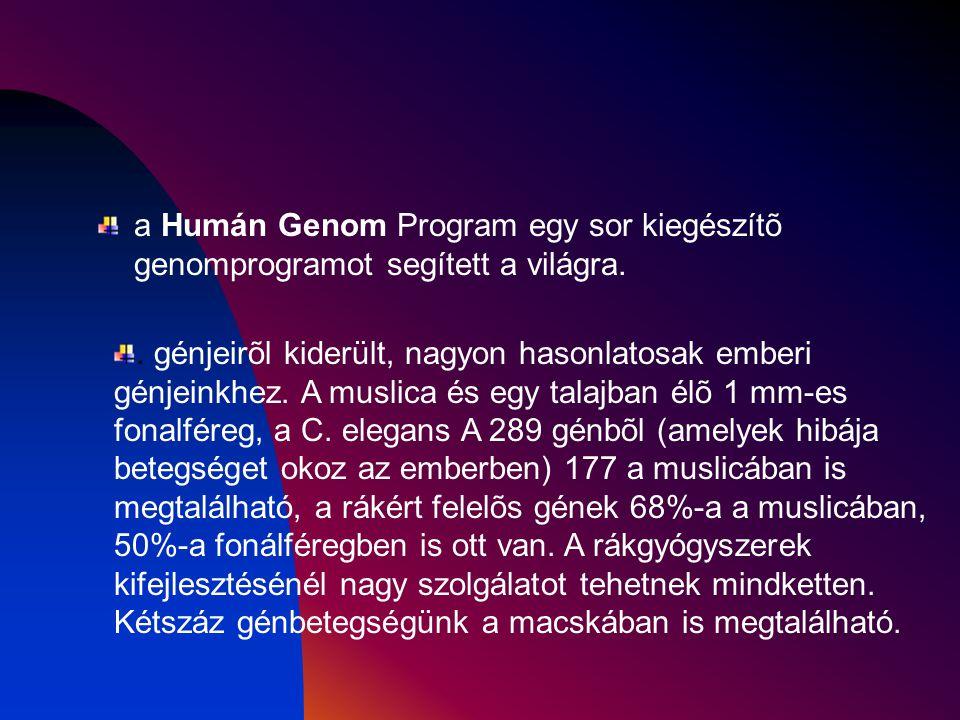 a Humán Genom Program egy sor kiegészítõ genomprogramot segített a világra.