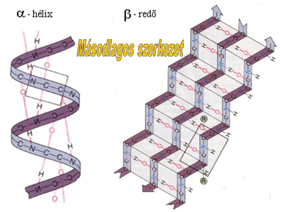 Másodlagos szerkezet
