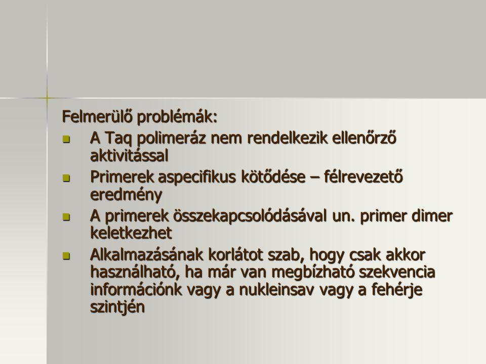 Felmerülő problémák: A Taq polimeráz nem rendelkezik ellenőrző aktivitással. Primerek aspecifikus kötődése – félrevezető eredmény.