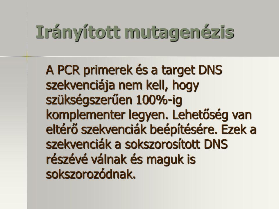Irányított mutagenézis