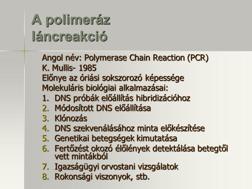 A polimeráz láncreakció