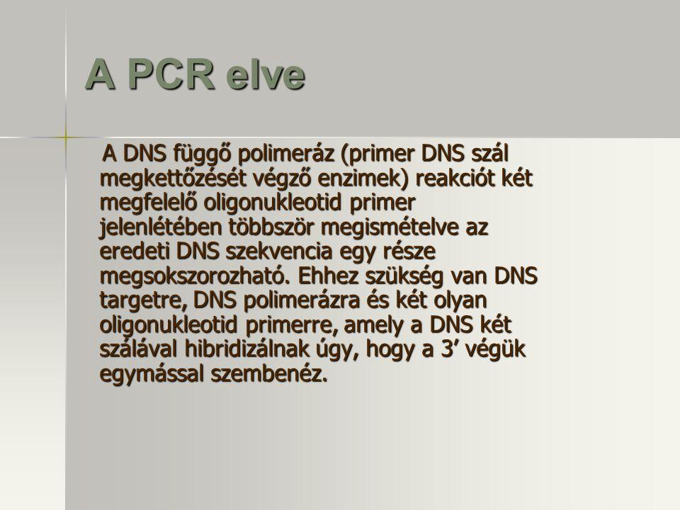A PCR elve