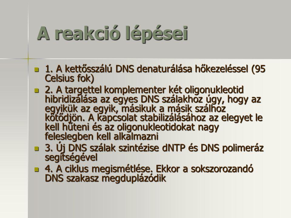 A reakció lépései 1. A kettősszálú DNS denaturálása hőkezeléssel (95 Celsius fok)
