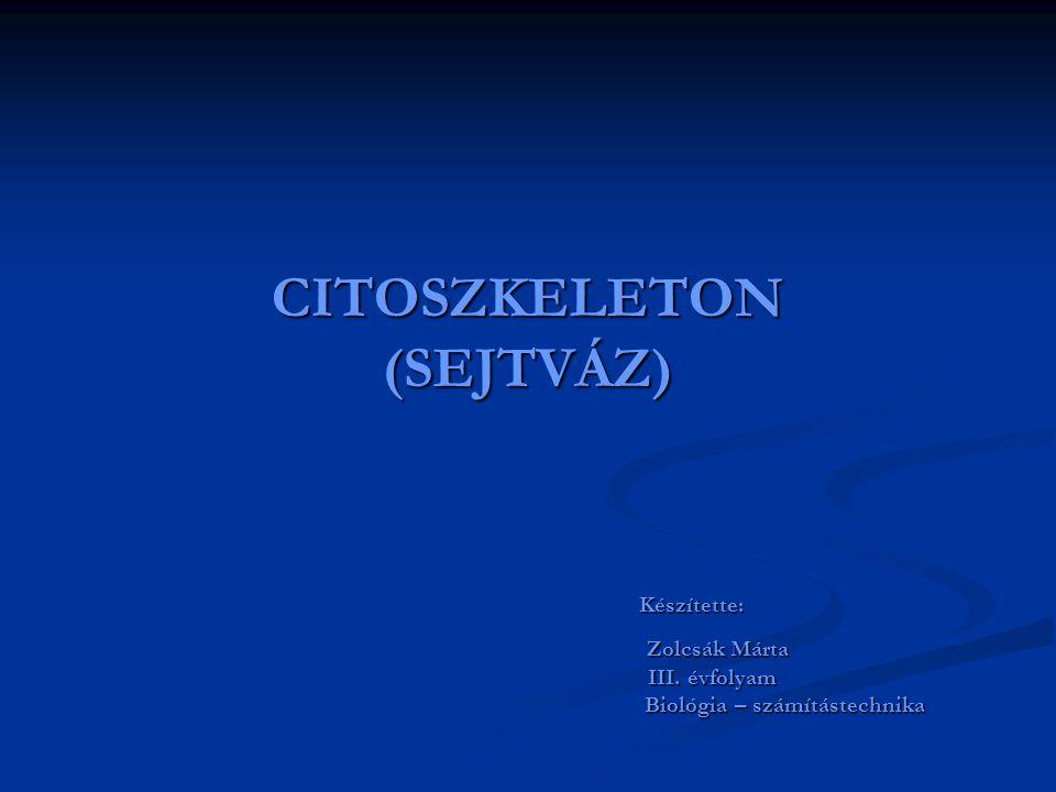CITOSZKELETON (SEJTVÁZ)