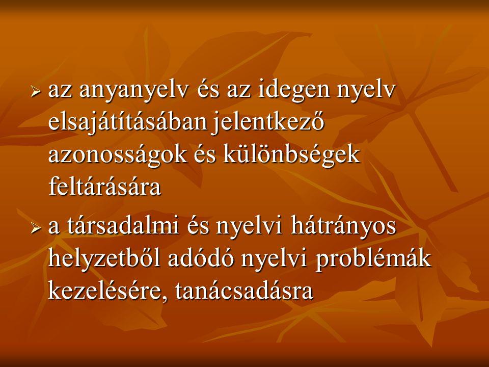 az anyanyelv és az idegen nyelv elsajátításában jelentkező azonosságok és különbségek feltárására