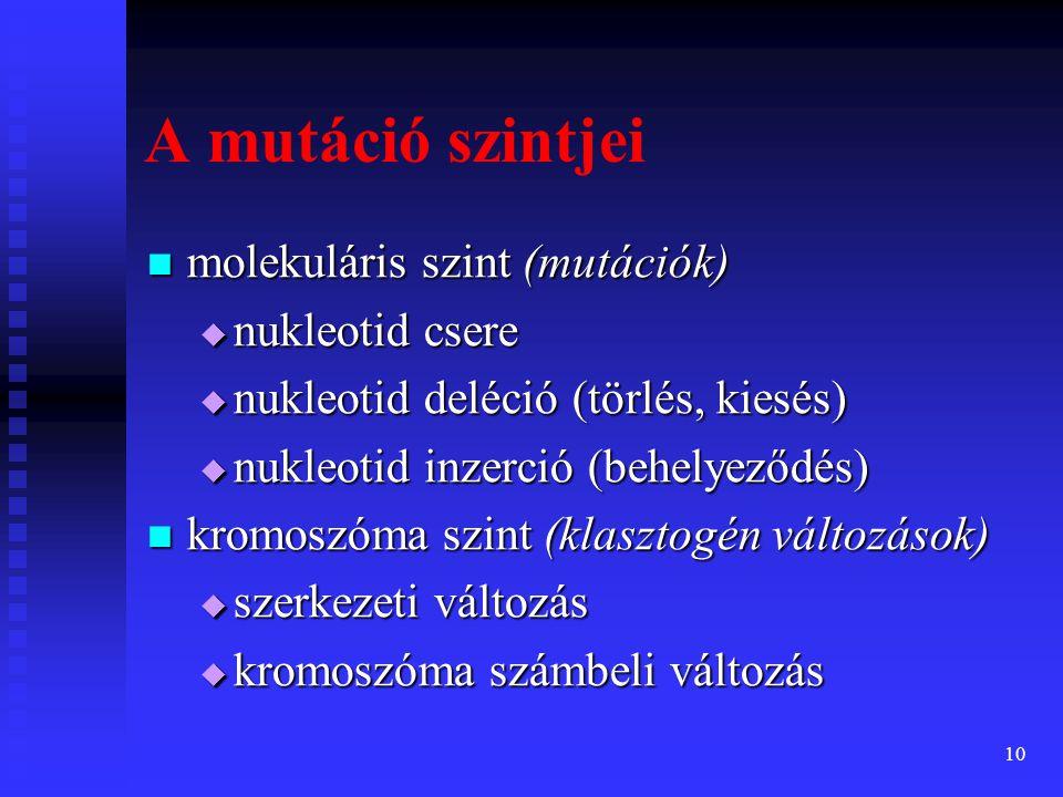 A mutáció szintjei molekuláris szint (mutációk) nukleotid csere