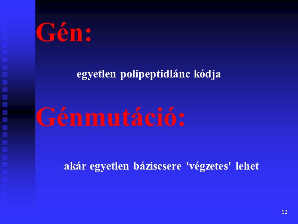 Gén: Génmutáció: egyetlen polipeptidlánc kódja