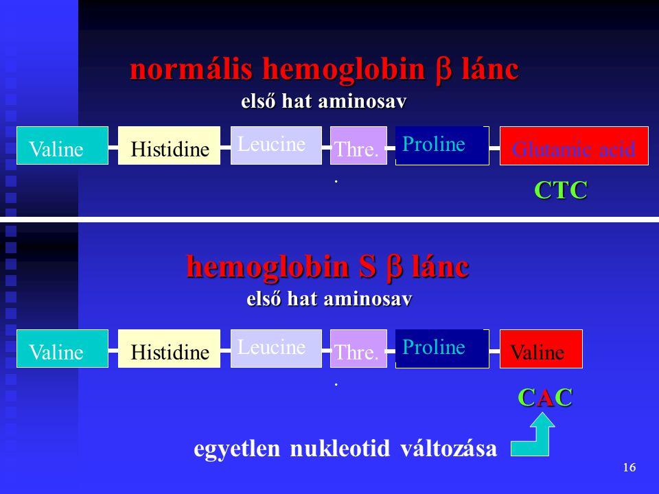 normális hemoglobin b lánc első hat aminosav