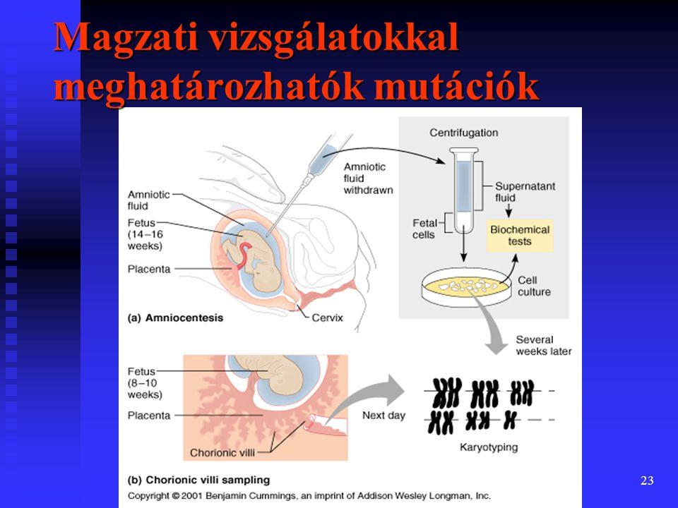 Magzati vizsgálatokkal meghatározhatók mutációk