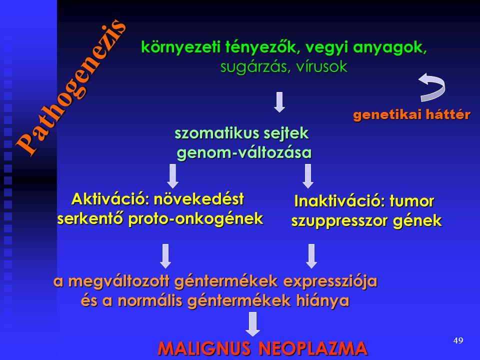 Pathogenezis MALIGNUS NEOPLAZMA környezeti tényezők, vegyi anyagok,