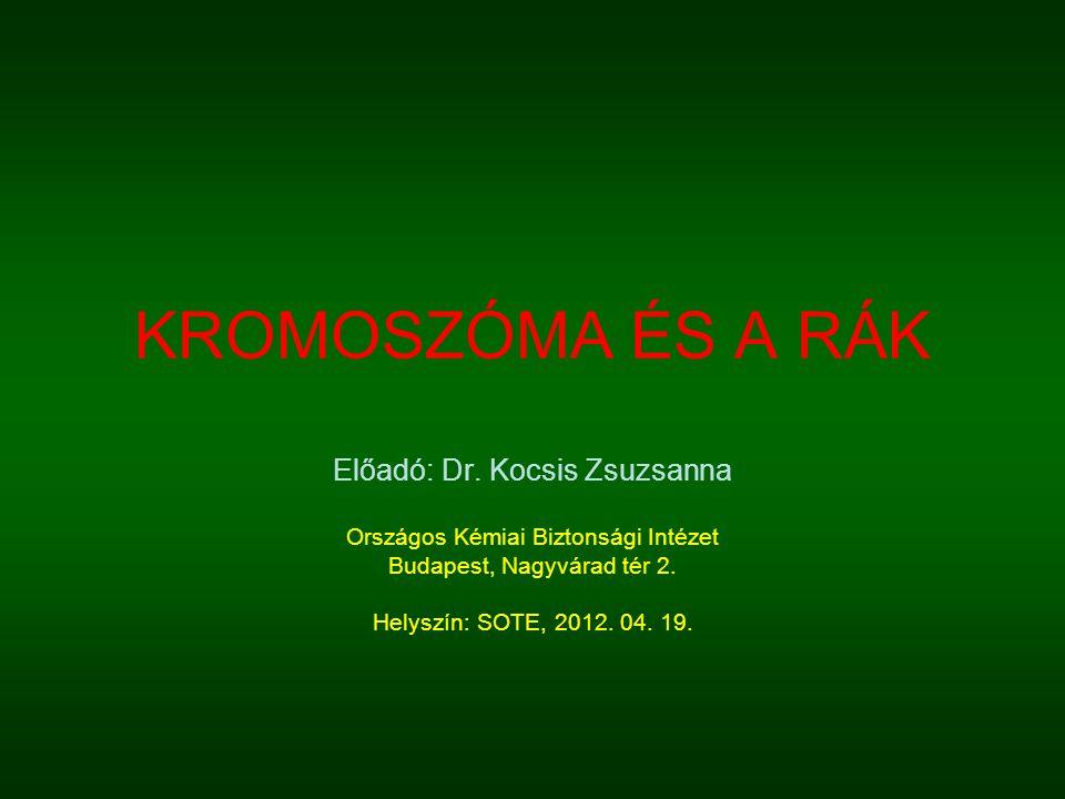 KROMOSZÓMA ÉS A RÁK Előadó: Dr. Kocsis Zsuzsanna