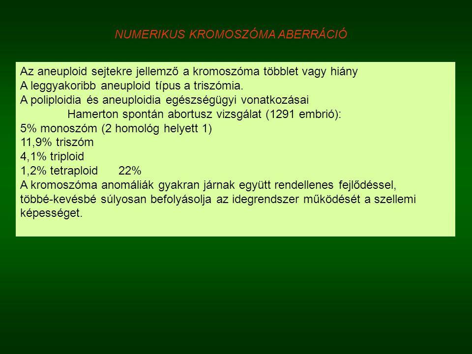 NUMERIKUS KROMOSZÓMA ABERRÁCIÓ