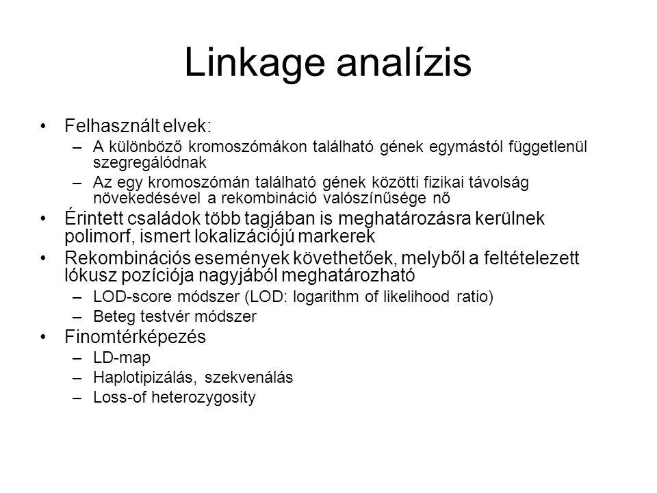 Linkage analízis Felhasznált elvek: