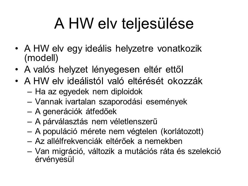 A HW elv teljesülése A HW elv egy ideális helyzetre vonatkozik (modell) A valós helyzet lényegesen eltér ettől.