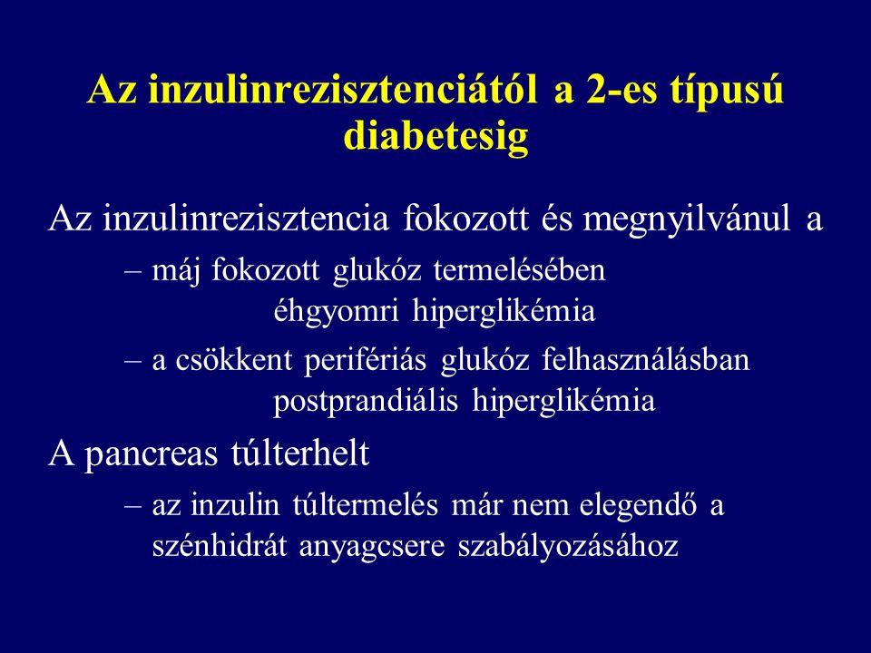Az inzulinrezisztenciától a 2-es típusú diabetesig