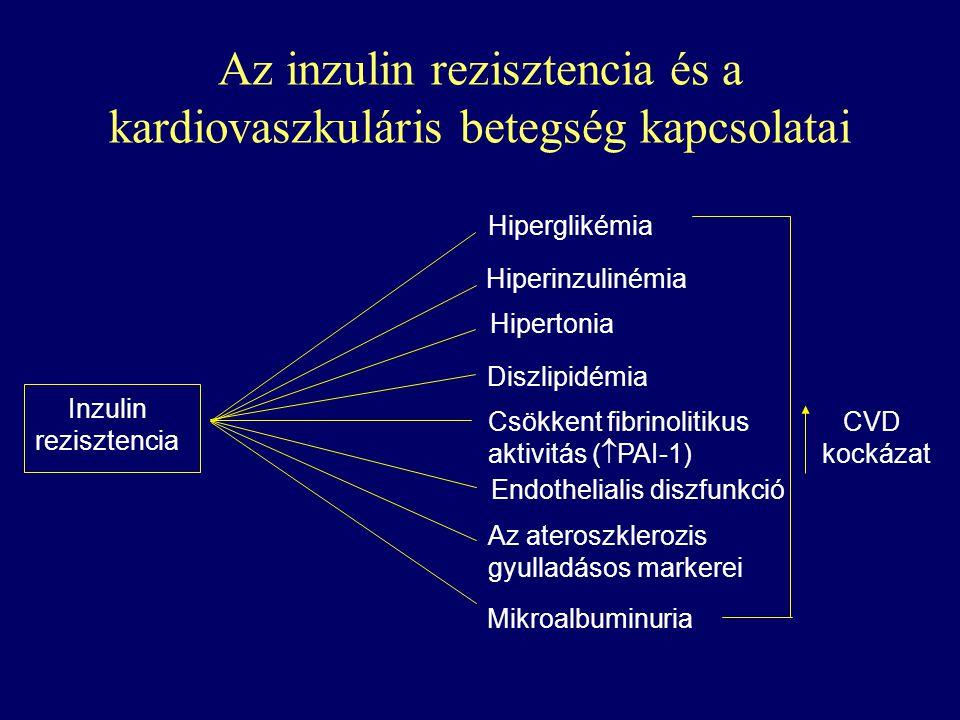 Az inzulin rezisztencia és a kardiovaszkuláris betegség kapcsolatai