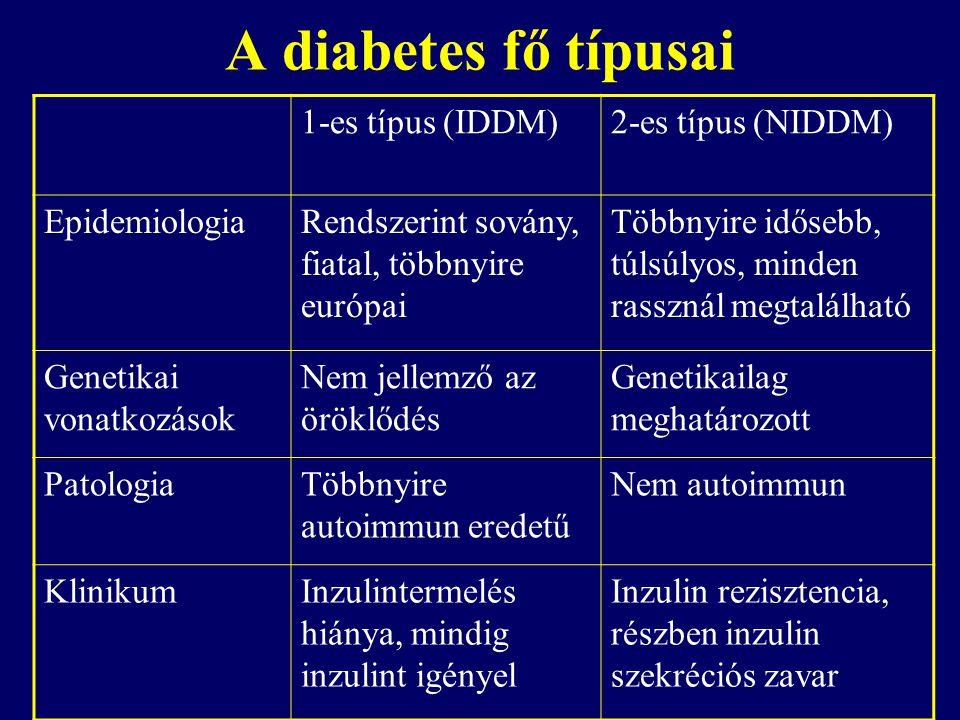 A diabetes fő típusai 1-es típus (IDDM) 2-es típus (NIDDM)