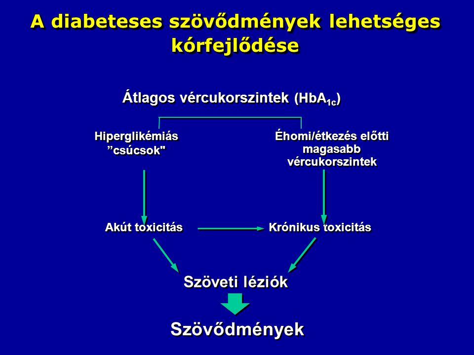 A diabeteses szövődmények lehetséges kórfejlődése
