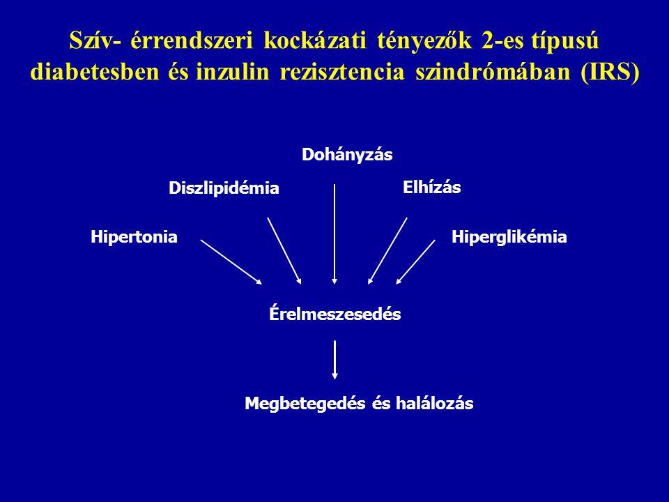 Szív- érrendszeri kockázati tényezők 2-es típusú diabetesben és inzulin rezisztencia szindrómában (IRS)
