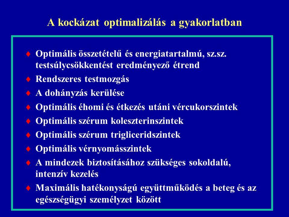 A kockázat optimalizálás a gyakorlatban