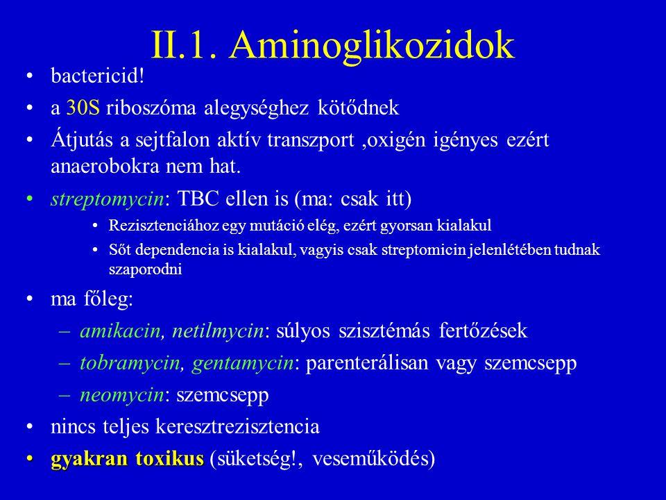 II.1. Aminoglikozidok bactericid! a 30S riboszóma alegységhez kötődnek