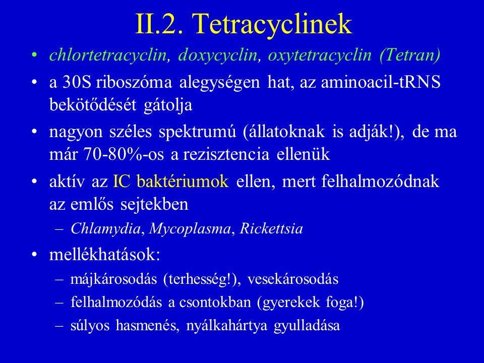 II.2. Tetracyclinek chlortetracyclin, doxycyclin, oxytetracyclin (Tetran) a 30S riboszóma alegységen hat, az aminoacil-tRNS bekötődését gátolja.