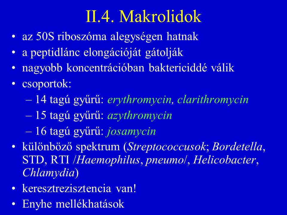 II.4. Makrolidok az 50S riboszóma alegységen hatnak