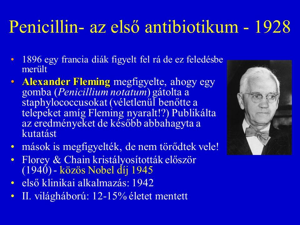 Penicillin- az első antibiotikum - 1928