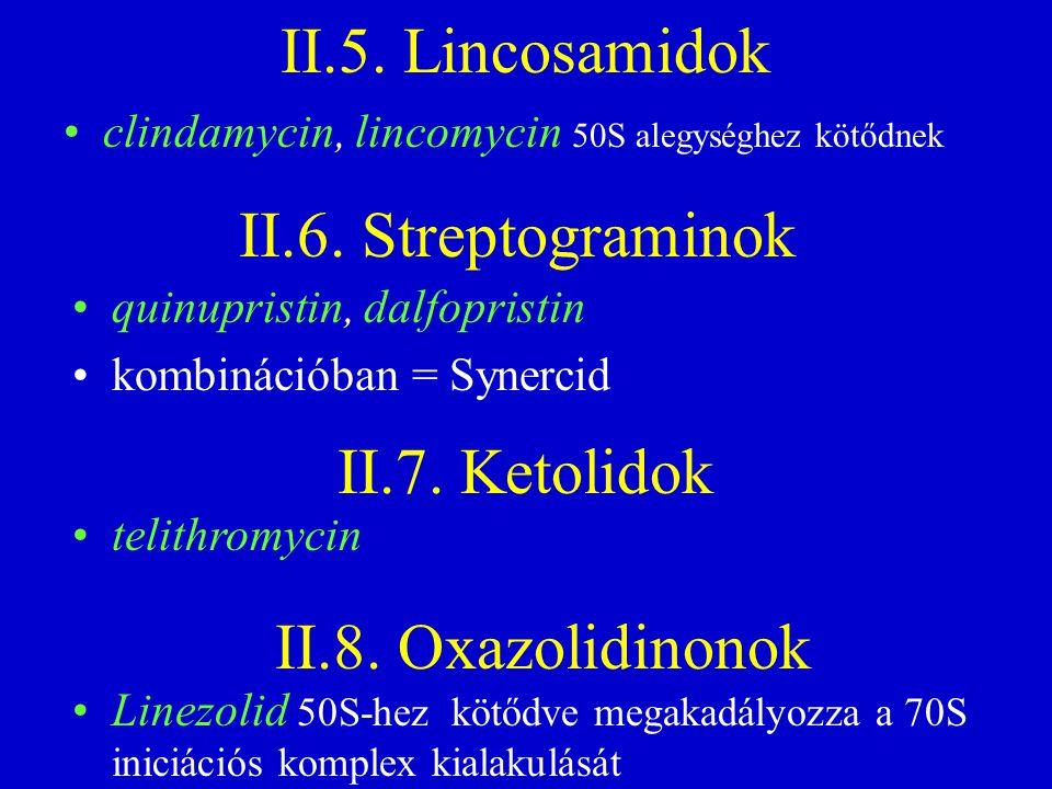 II.5. Lincosamidok II.6. Streptograminok II.7. Ketolidok