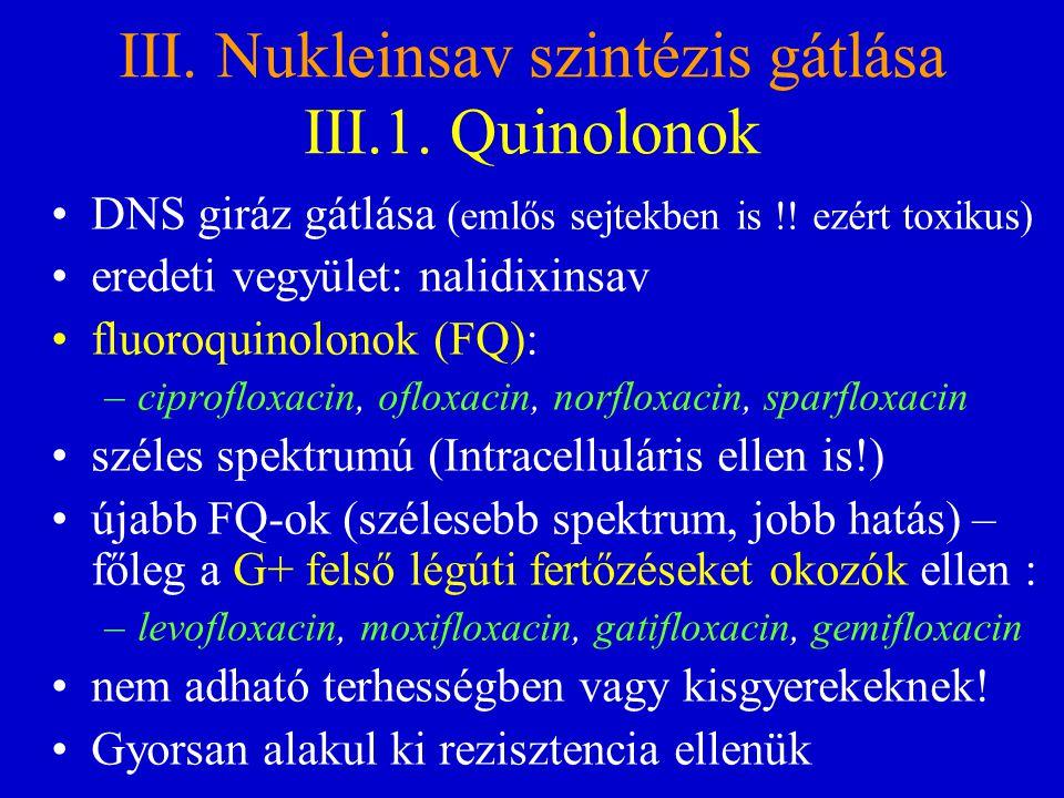III. Nukleinsav szintézis gátlása III.1. Quinolonok