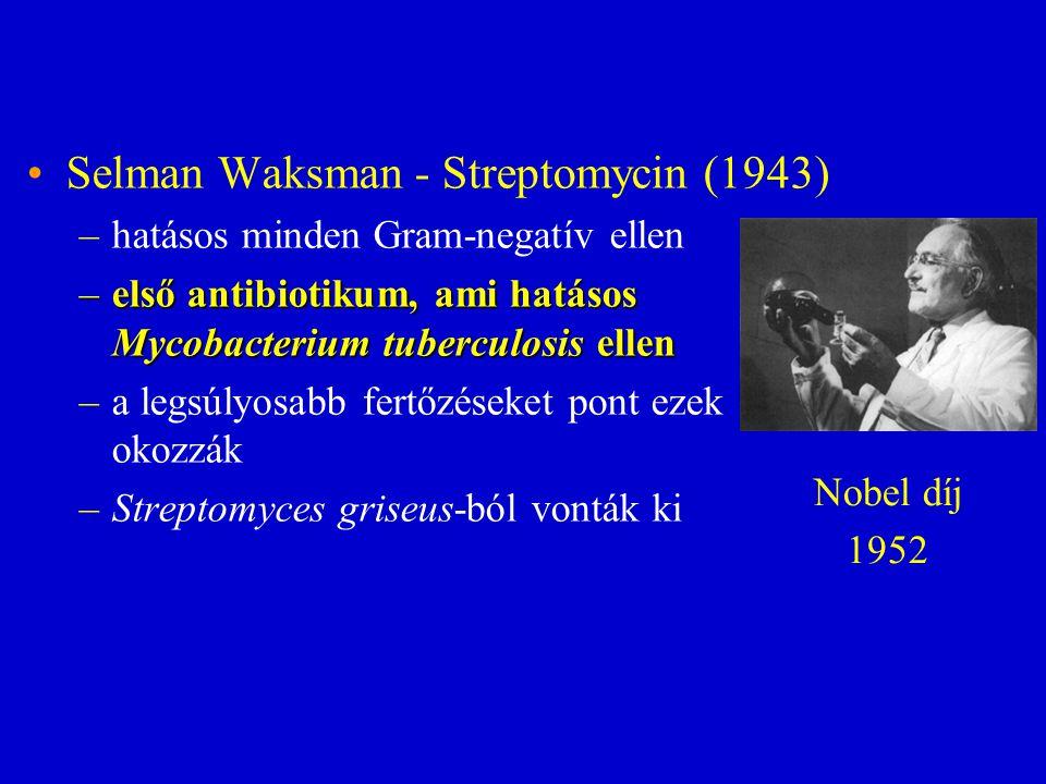 Selman Waksman - Streptomycin (1943)