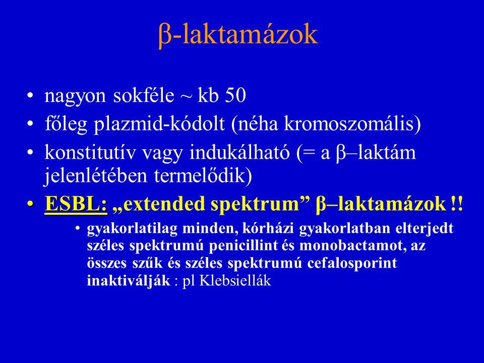 β-laktamázok nagyon sokféle ~ kb 50