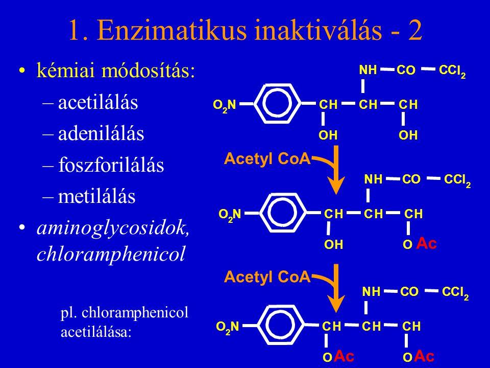 1. Enzimatikus inaktiválás - 2