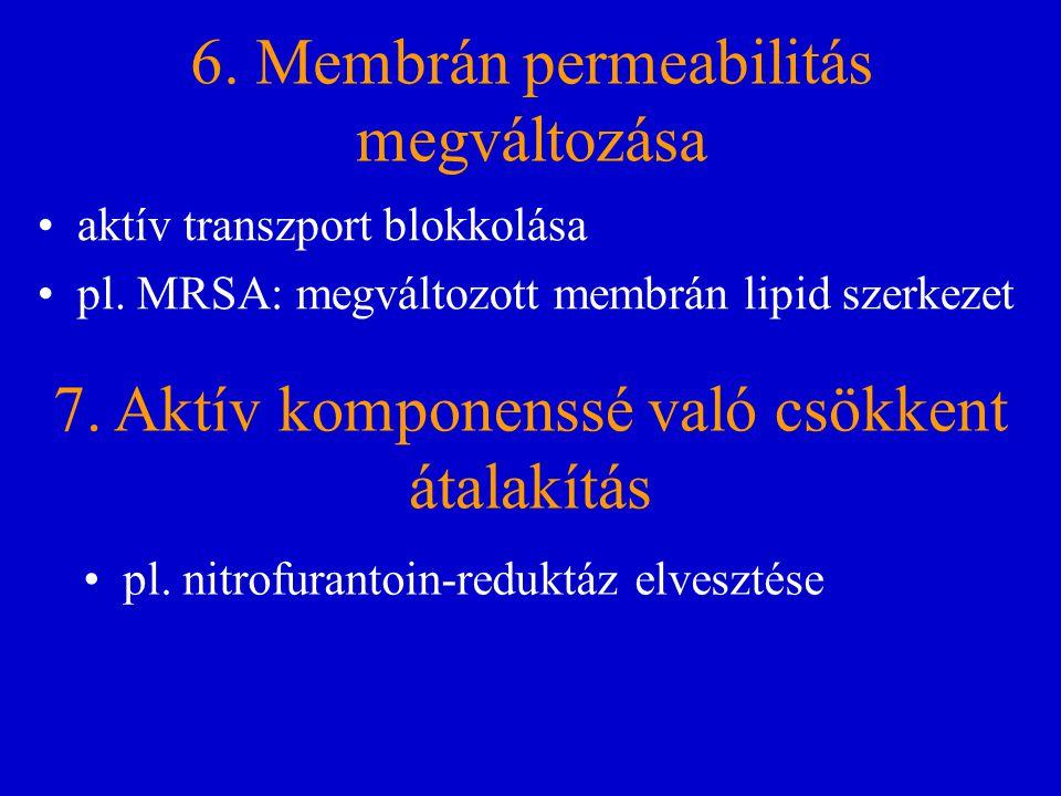 6. Membrán permeabilitás megváltozása